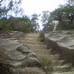 One of the steeper sections of trail (7781)