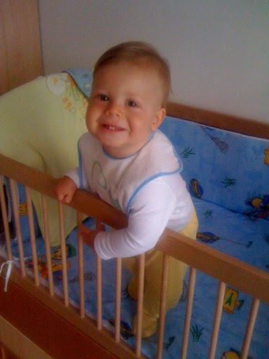 ce papa bebe la 7 luni