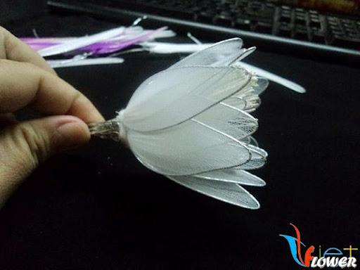 làm hoa quỳnh bằng vải voan - bước 5