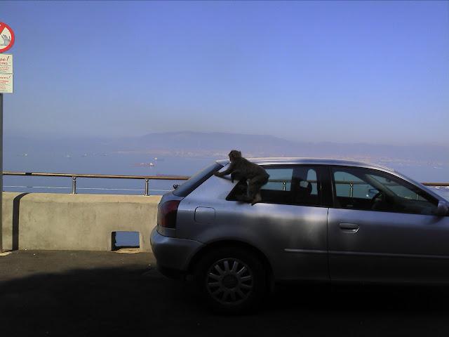 gibraltar - Sobreda - Cebolais - Algeciras - Gibraltar - Ronda - Malaga - Granada 2011-07-26%25252011.27.28