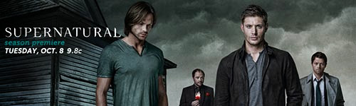 Download - Supernatural 9 Temporada