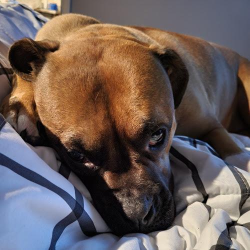 MarineCorp1979 Profile Photo