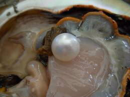 Image: pearl-guide.com