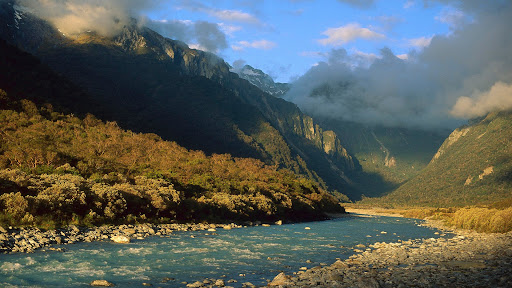 Copland River Above Welcome Flats, Westland National Park, New Zealand.jpg