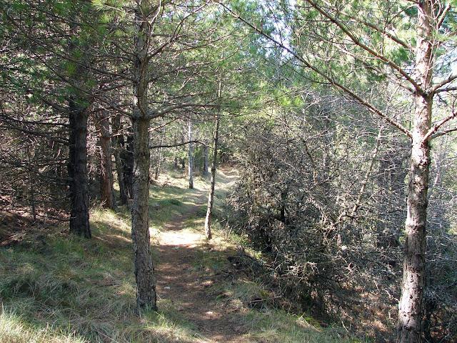 Senderismo Castell de Cabres - El Boixar - Coratxà