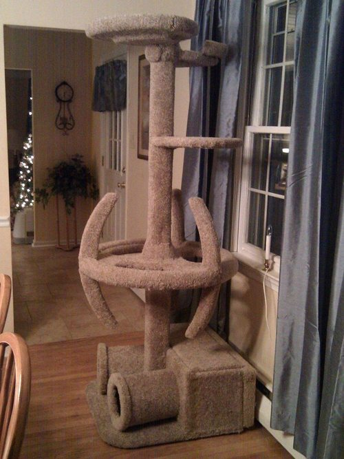 Trekkie cat tree?!?