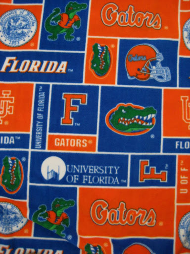 University of Florida Cloth Diaper