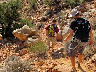 Descending into White Canyon
