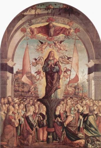 Saint Ursula A Story Of Courage
