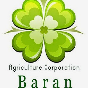 Baran Co review