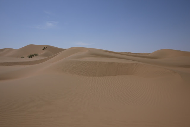 sand dunes in desert at Shapotou in Ningxia