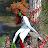 mandyscog avatar image