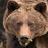 Rob 223 avatar image