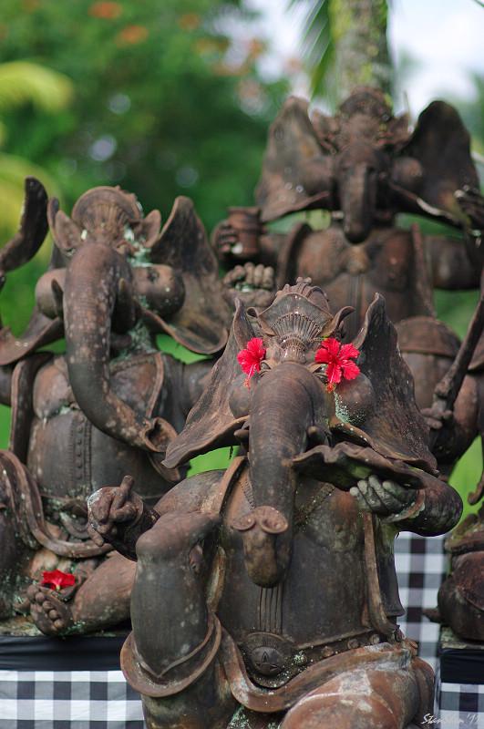 在峇里島跳星芭舞(FA*85)