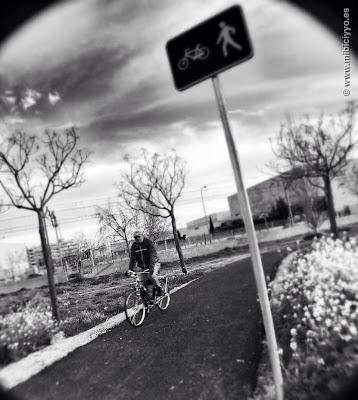 Carril bici a la altura Calle Guadalquivir Poligono Son Fuster
