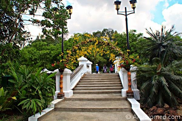 jambatan ke pameran orkid