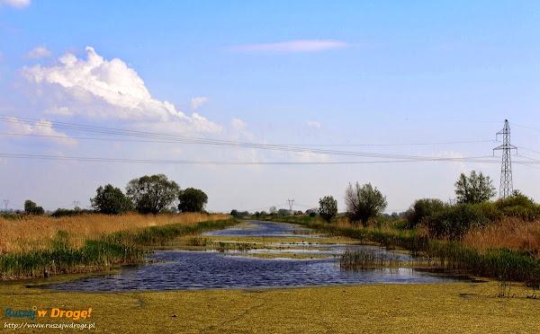 żuławskie rzeki i kanały