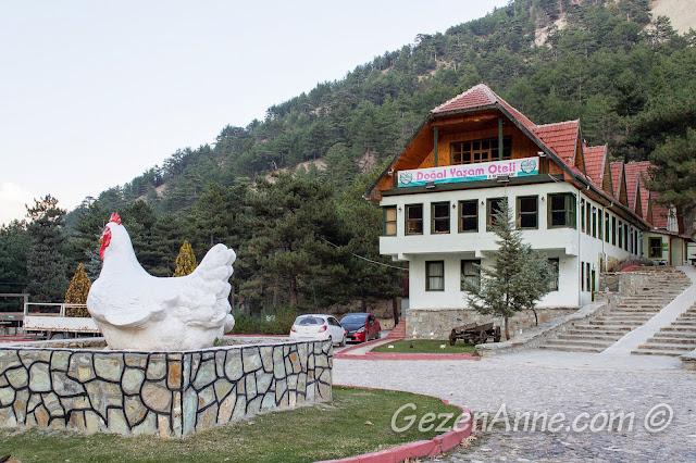 Bolu Sünnet Gölü'ndeki Doğal Yaşam Oteli ve tavuk heykeli