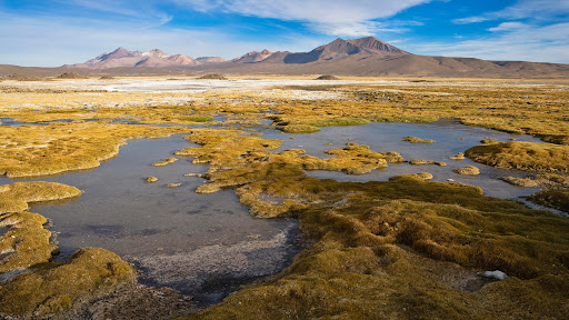 Lauca National Park, Chile.jpg