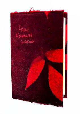 llibre de poemes escrit a mà
