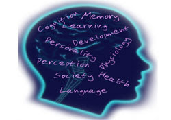 Pengertian Psikologi Menurut Para Ahli