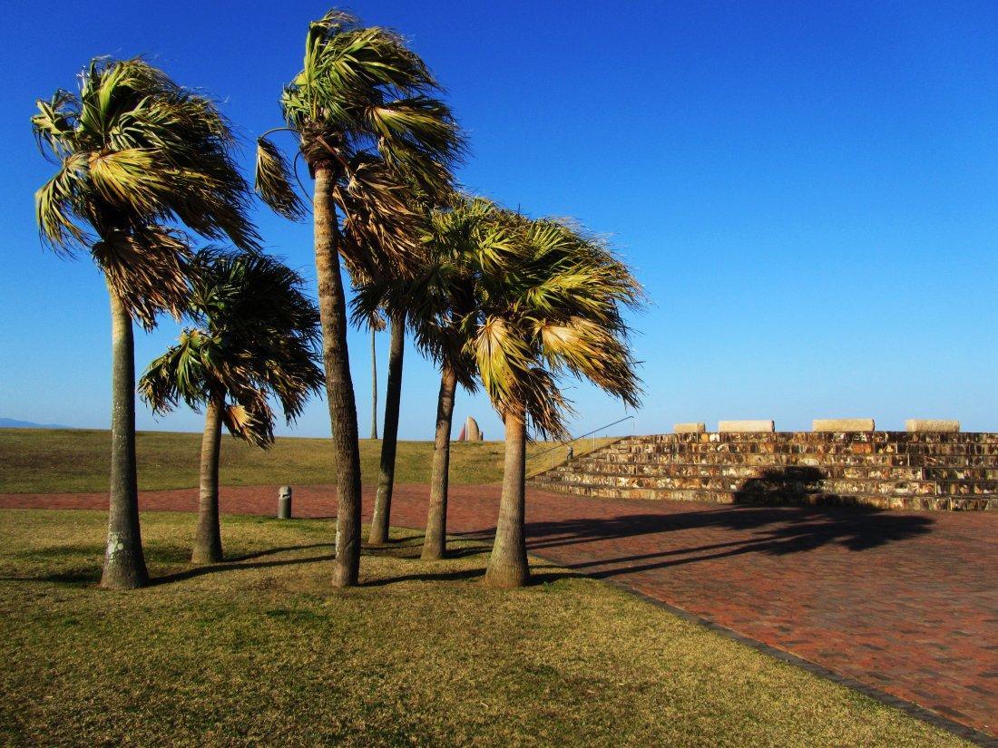 Palm Beach Research