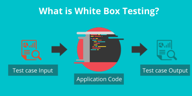 test-case-input-application-code-test-case-output-of-white-box-testing