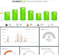 The Dashboards: Nike on Top, Fitbit on Bottom