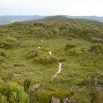 Fortress Ridge track (40923)