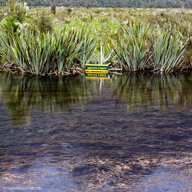 Mirror Lakes at Fiordland National Park New Zealand | Day 5 Sweet as South Contiki Tours.