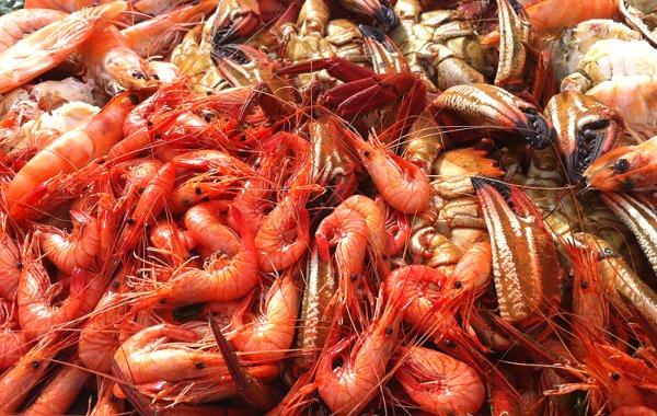Qué comer en Vigo