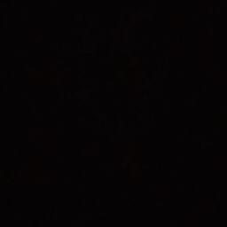 Jesus Carranza Photo 13