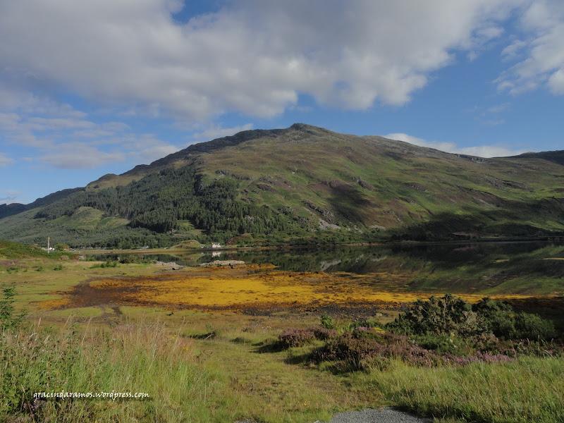 - Passeando até à Escócia! - Página 15 DSC04032