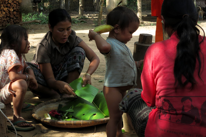 Assembling sticky rice with banana to be steamed in banana leaves