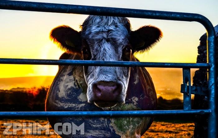 Ảnh trong phim Giải Pháp Cải Thiện Môi Trường - Cowspiracy: The Sustainability Secret 1