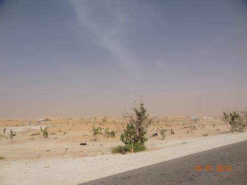 marrocos - Marrocos e Mauritãnia a Queimar Pneu e Gasolina - Página 8 DSC06195