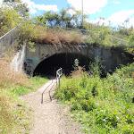 under the west Charlestown bypass (66375)