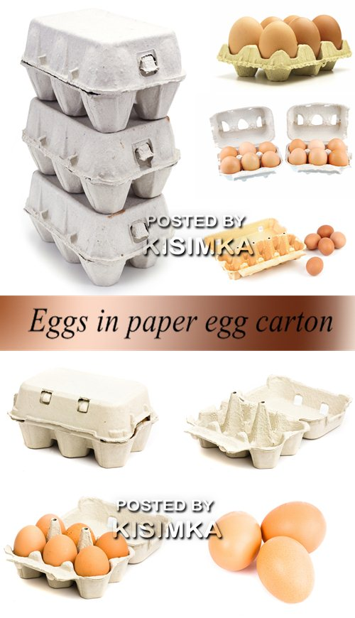 Stock Photo: Eggs in paper egg carton