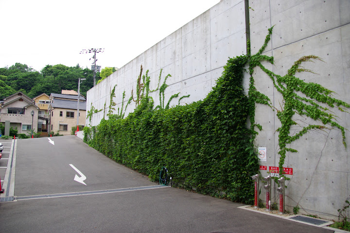 護付有料老人ホーム 屋上緑化 設計:安藤忠雄建築研究所・施工:細川エクステリア