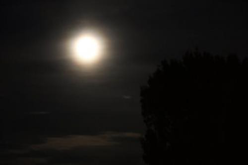 A Full Moon To Sing Under