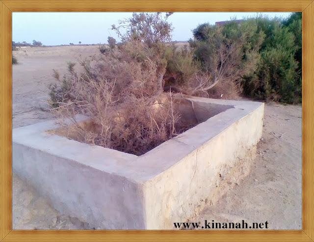 مواطن قبيلة الشقفة (الشقيفي الكناني) الماضي t8197-7.jpeg