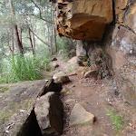 Walking along the rock wall (178275)