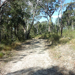 Elvina Track near West Head Rd. (304422)