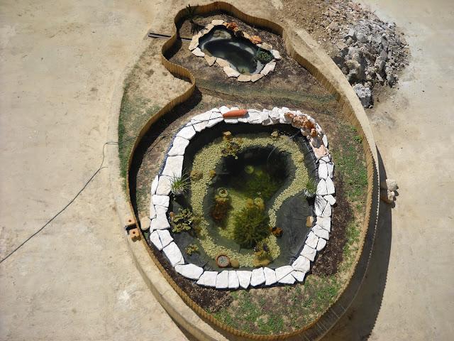 Ex laghetto for Pompa per laghetto tartarughe