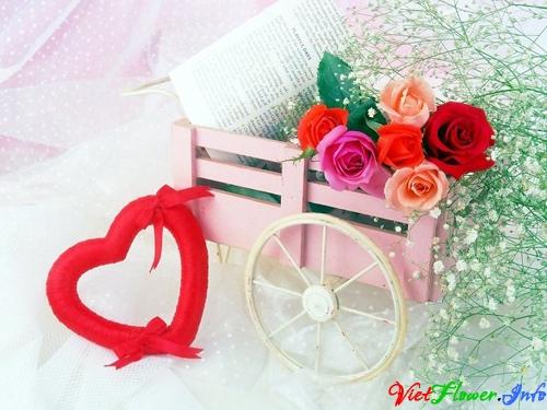 Tặng hoa hồng mang ý nghĩa tình yêu