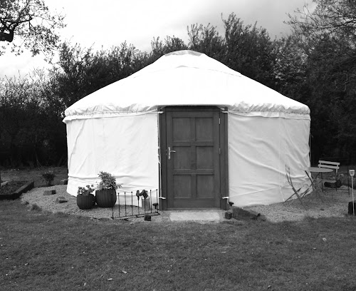 The Little Yurt Meadow at The Little Yurt Meadow