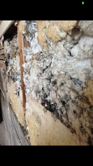 Help asbestos or horse hair in walls hepa filter for Does drywall have asbestos