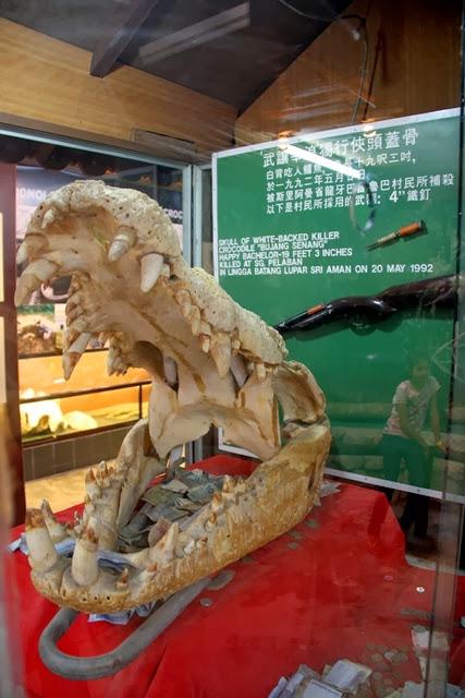 Taman-Buaya-Jong's-Crocodile-Farm