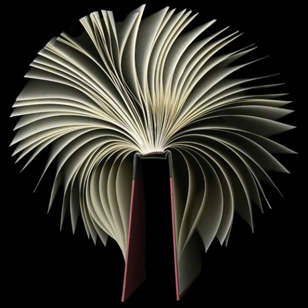 Book Sculptures by Cara Barer