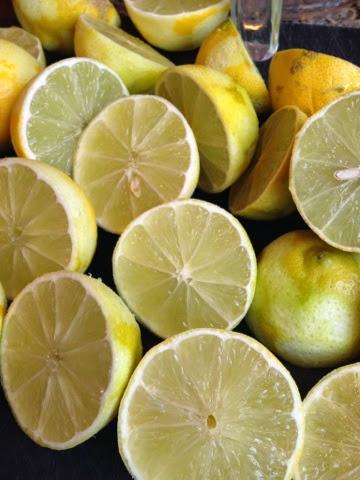 Bearrs limes